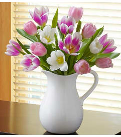 Pitcher Full of Tulips