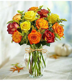 Rose Elegance™ Premium Long Stem Autumn Roses