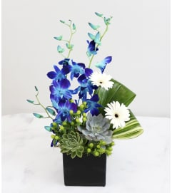 Contemporary Chic Bouquet
