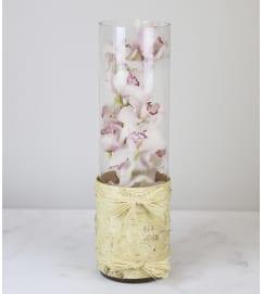 Cymbidium Vase