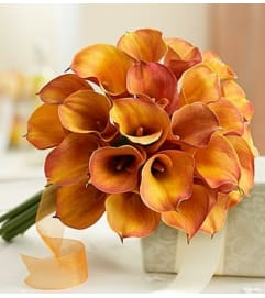 Golden Sunset Mini Calla Lily Bouquet