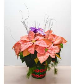 Pink Poinsettia Basket