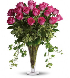 Dreaming in Pink - 18 Long Stemmed Pink Roses