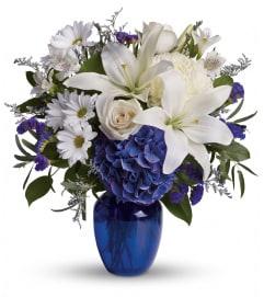 Beautiful in Blue DW