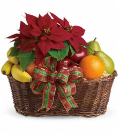 Fruit and Poinsettia Basket
