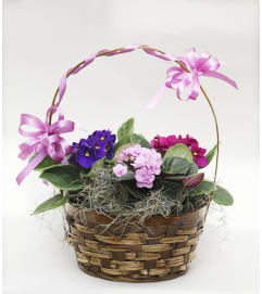 Peter's Lovely Violet Basket