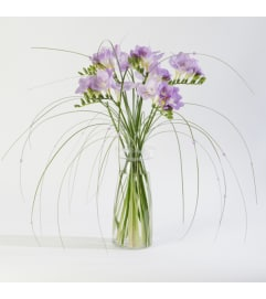 Freesia in Beaded Grass