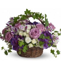 English Plum Basket