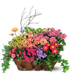 Bursting with Beauty Garden Basket