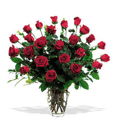 CLASSIC TWO DOZEN ROSE BOUQUET