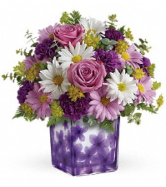 Teleflora's Dancing Violets Bouquet