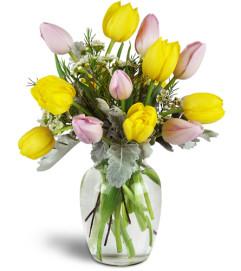 Too Too Tulips!™