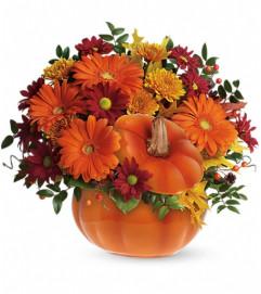 Teleflora's Country Pumpkin