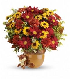 Teleflora's Send a Hug™ Squirrel Away Bouquet