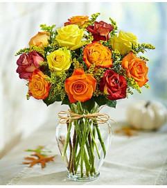 Rose Elegance™ Premium Long Stem Autumn Roses