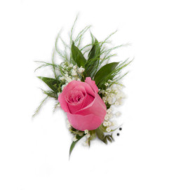 Rose Boutonniere with Baby's Breath