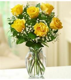Rose Elegance™ Premium Yellow Roses - 1/2 Doz