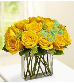 Modern Roses - One Dozen Yellow