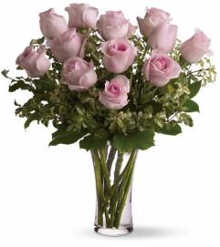 A Dozen Pink Roses