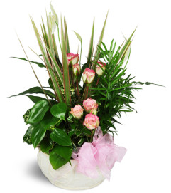 Sweet Memories Sympathy Planter™
