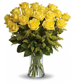 Burst of yellow roses