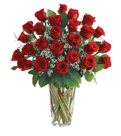 Classic 2 Dozen Red Rose