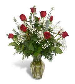 Premium Dozen Roses in Red