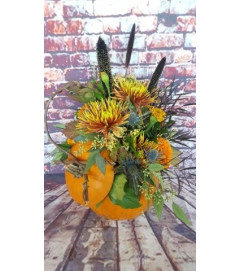 CUSTOM ARRANGEMENT IN REAL PUMPKIN