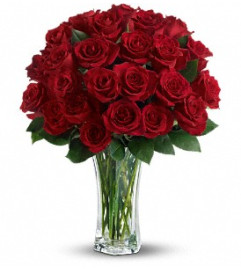 Love and Devotion - 24 Stemmed Red Roses