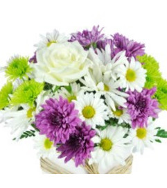 VASE OF WHITE AND PURPLE FLOWERS