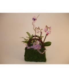 Mini Orchids in a Purse (Small)