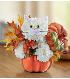 Fabulous Feline™ for Fall