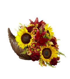 FTD® Fall Harvest™ Cornucopia by Better Homes and Gardens® 2016