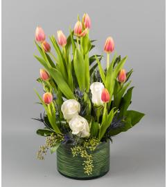 Tulip Desire