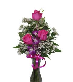 Pretti Pink and purple