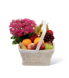The FTD® Garden's Paradise™ Basket