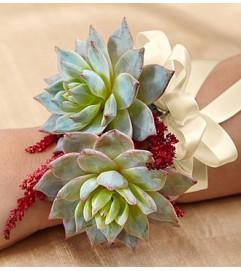 Vineyard Wedding Corsage - Succulent
