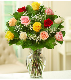 Rose Elegance™ Premium Assorted Roses