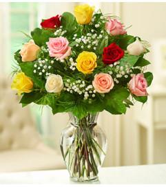 Rose Elegance™ Premium Assorted Roses