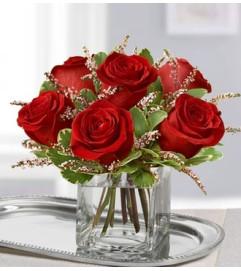 Rose Romance™