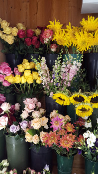 About flowers by reni hours delivery in fishkill ny caroline mcclosky manager mightylinksfo