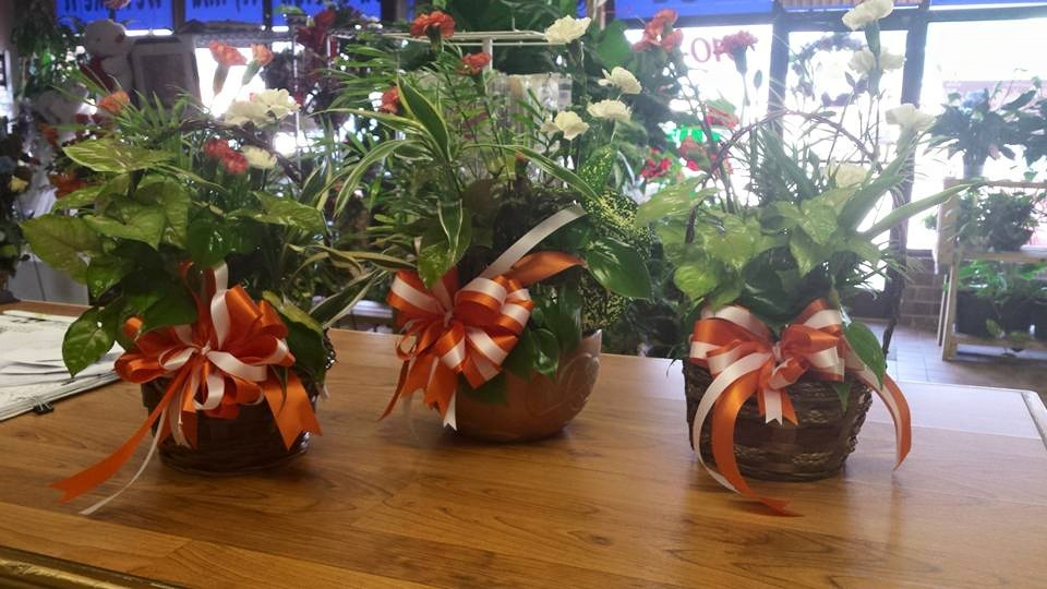 About peters flowers hours delivery in spring lake nc peters flowers is a flowershop run by gary ross in spring lake nc mightylinksfo