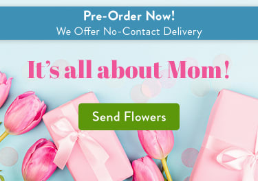 San Diego Ca Florist Same Day Flower Delivery In San Diego Ca