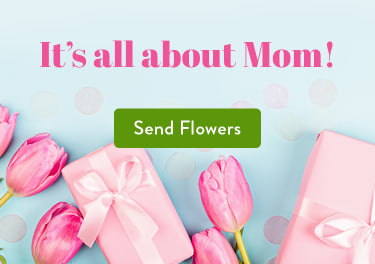 Phoenixville Pa Florist Free Flower Delivery In Phoenixville Pa