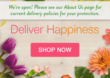 Image announcing temporary delivery policies - flower delivery in Spring