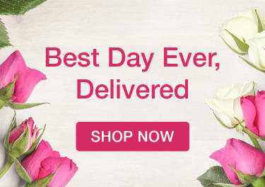 Pink, white, and lavender roses for a floral arrangement - flower delivery in Trenton
