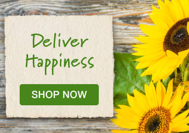 Yellow sunflowers on a rustic wood background - flower delivery in Woodward