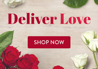 Romantic red and white roses for Valentine's Day - flower delivery in Santa Ana