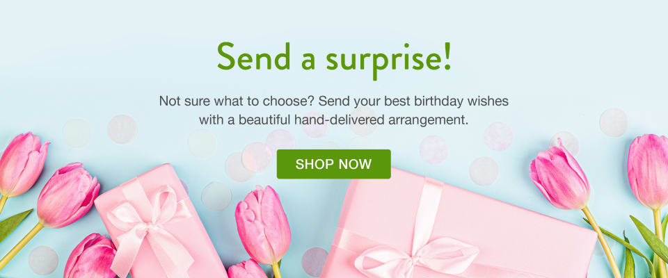 Pink tulips and pink wrapped gifts on a blue background - flower delivery in San Carlos
