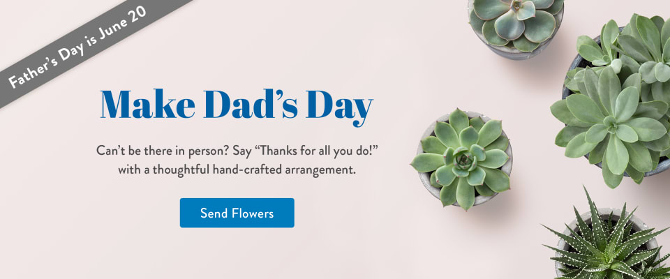 Succulent plants as gifts for Father's Day - flower delivery in Quinte West